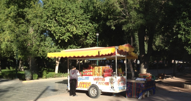Elotes Stand. Mexican Street Snacks.